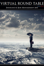 Insurance & Risk Management 2014